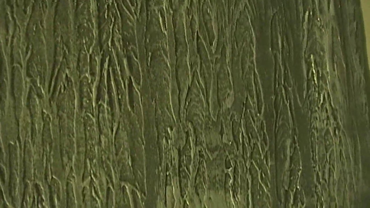 Painting Tree Bark Wall Texture Part 3 YouTube