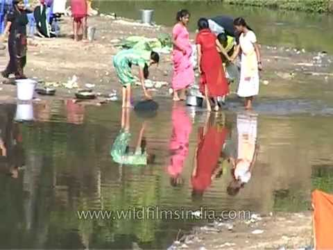 Assamese women wash utensils in a dirty pond, Assam