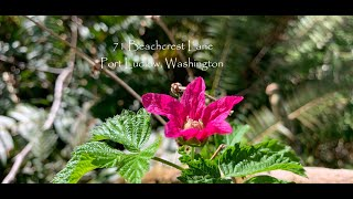 71 Beachcrest Ln, Port Ludlow, Washington