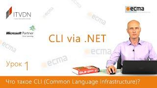 CLI via .NET. Обзор 1.0. Что такое CLI (Common Language Infrastructure)?