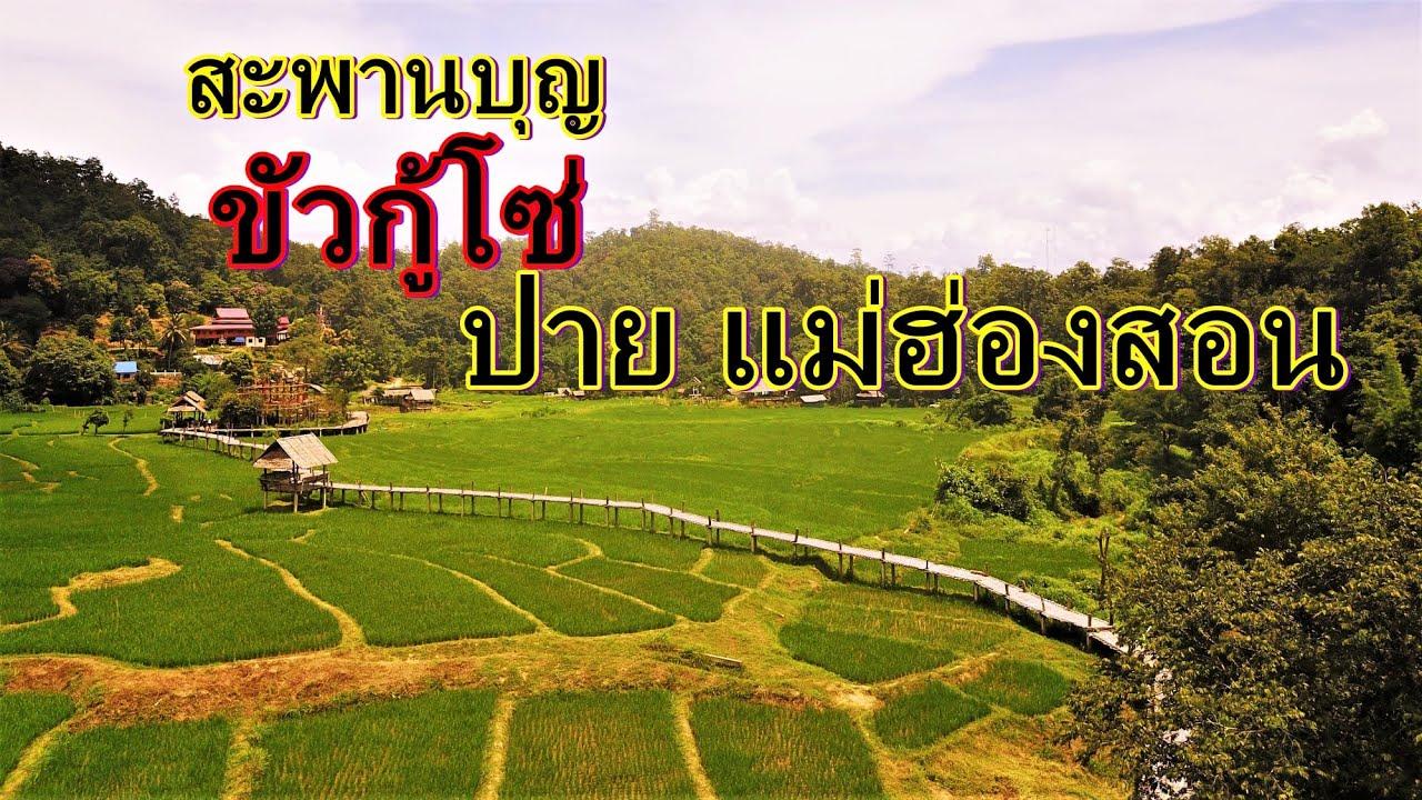 สะพานไม้ไผ่,สะพานบุญ,ขัวกู้โซ่,ปาย แม่ฮอ่องสอน,Bamboo Bridge,Mae Hong Son,หมู่บ้านแพมบก,ห้วยคายคีรี