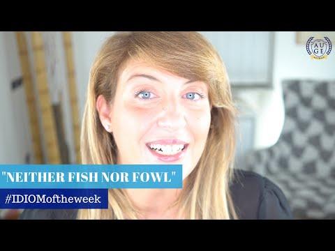 NEITHER FISH NOR FOWL: English Idiom