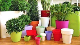 Как правильно выбирать горшок для комнатных растений! Пластик, керамика, стекло - что лучше?