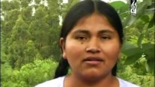 Aurelia Flores - Mira que lindo es mi Señor.