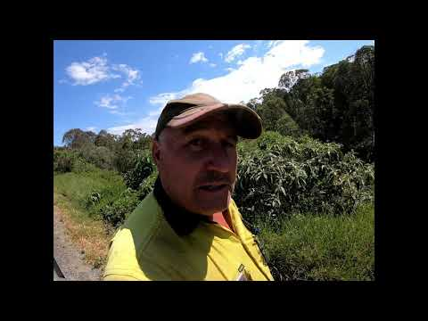 Bio Security in Australia Dayboro Road Queensland Part 1