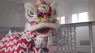 Swiss Chinese Liondance Performance