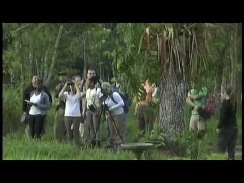 Belize Field  school  2012 .