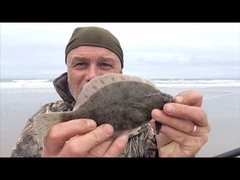 Flounders From The Welsh Coast And The Rig Used