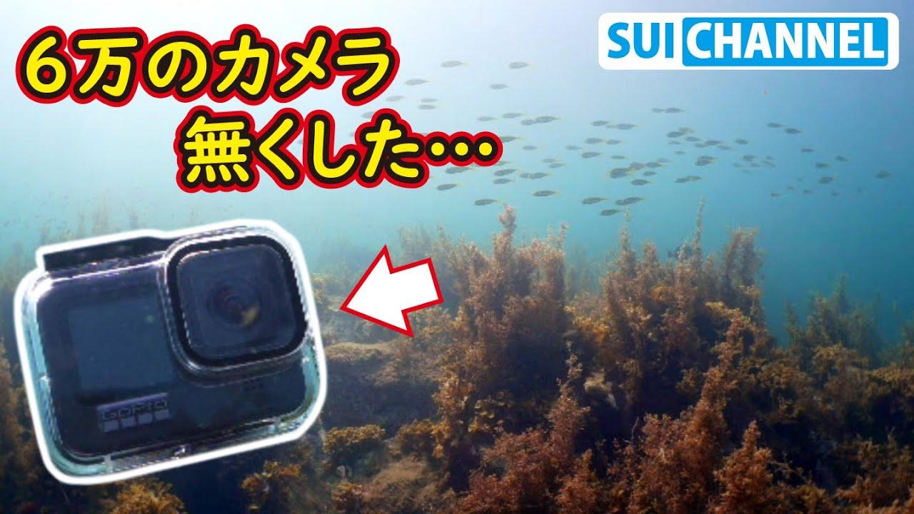 まじへこみ。海のどこかに落としたカメラを探しに行く