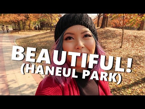DAY 2 IN SEOUL! (HANEUL PARK IS BEAUTIFUL!) Nov. 5, 2017 - saytioco