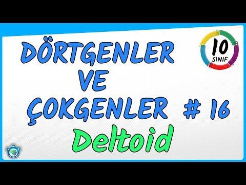 Deltoid | Dörtgenler ve Çokgenler 16 |  10.Sınıf