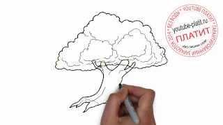 Нарисованные деревья  Как нарисовать старый дуб(Как нарисовать дерево поэтапно карандашом за короткий промежуток времени. Видео рассказывает о том, как..., 2014-07-02T17:37:47.000Z)