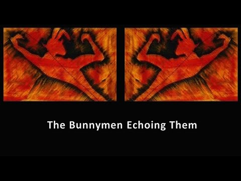 The Bunnymen Echoing Them - Compilation
