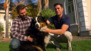 Family Returns Home to Find Dog Left Behind During Wildfires