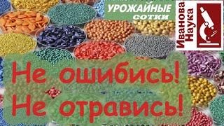Без ошибок! ТОЛЬКО ТАК правильно обращаться с обработанными семенами!