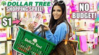I Buy EVERYTHING NEW At DOLLAR TREE! NO BUDGET SHOPPING SPREE!