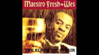 Maestro Fresh Wes - Poetry Is Black