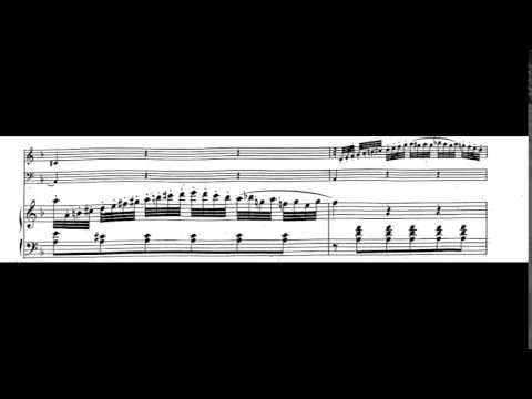 Trio Nr. 7 in C Major for Violin, Cello, and Piano, K. 548 | W. A. Mozart | Eroica Trio