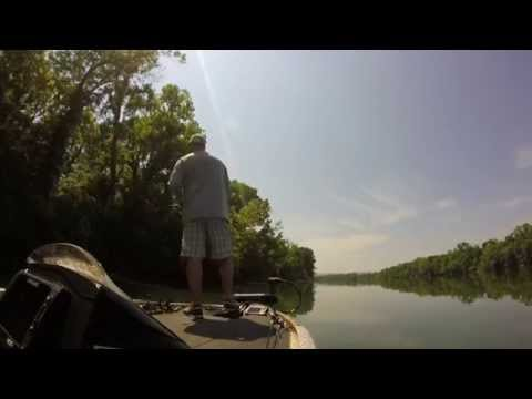Gopro worm fishing around wood youtube for Fishing worms near me
