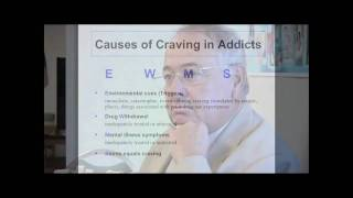 Causes of Craving.  Addiction 101:  A Guide to Addiction Treatment - Preview