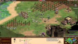 Aoe2 HD: 3v5 Salt Marsh (Vikings, Militia Rush 'Drush')