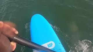 바다캠프 만리포 패들보드 레슨 후 서핑하다.