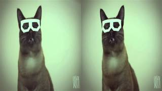 Stereo Skifcha (Dubstep Hipster Cat)