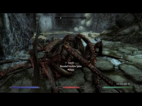 How to deal with Bleak Falls Barrow spider | Skyrim PS4
