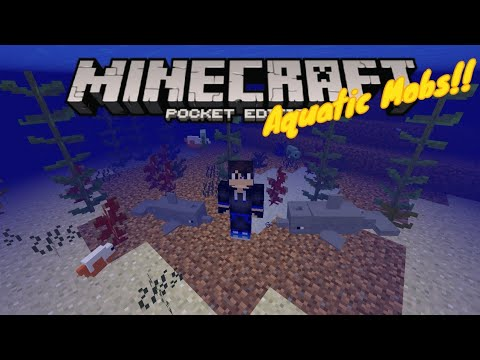 Minecraft 1.14 The Aquatic Update Mobs + Kelps!! (Monsters, Dolphin, Fish,...) - Addon - MCPE