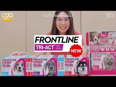 KUG Review: Newin ยาป้องกันเห็บหมัด ยุง! Frontline TriAct
