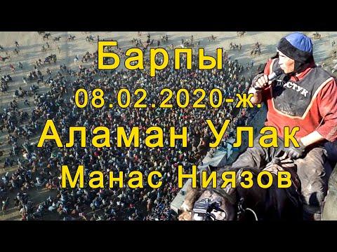 Барпы Аламан Улак 8.02.20. Ташиев Шайырбек | Тынар Курбаналиев| Манас Ниязов| Жалалабад Кок бору