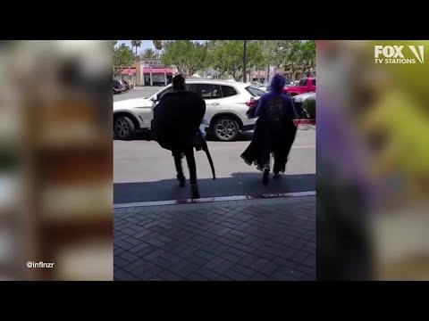 Shoplifters hit TJ Maxx in Granada Hills