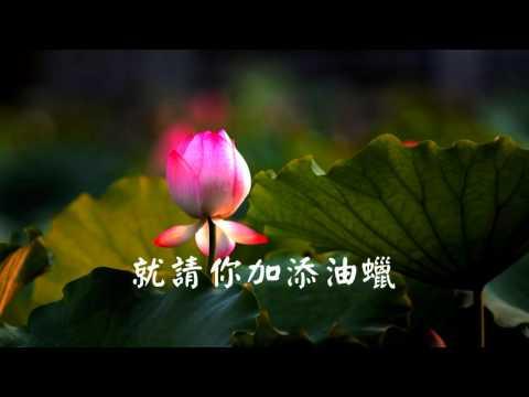 蓮花燈 歌曲