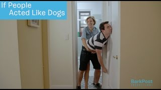 Because We All Know How Fun Getting Your Pup In the Bath Is | IF PEOPLE ACTED LIKE DOGS