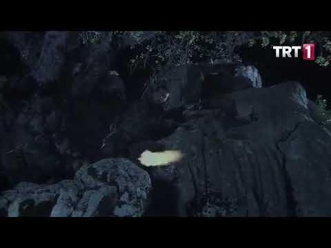 Poyraz Timi pusuda (Sakarya Fırat 22. bölüm)