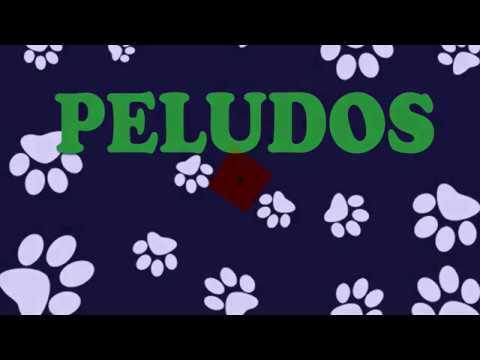 PELUDOS (Programa 1)