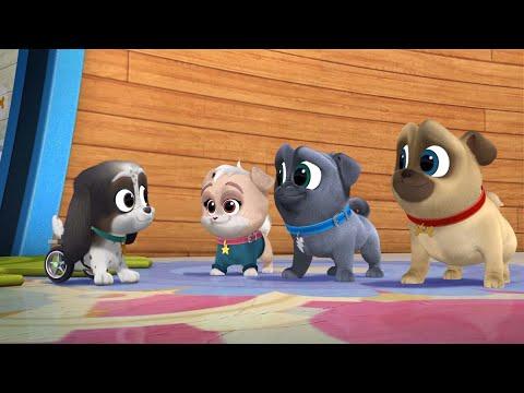 Promo PUPPY DOG PALS nuevos episodios