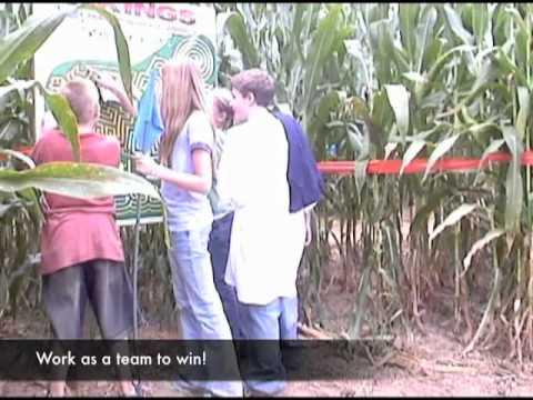 Stony Hill Corn Maze 2011