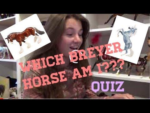WHICH BREYER HORSE AM I? quiz Breyer Trot