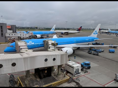 "Flight Report   New Delhi ✈ Amsterdam   KLM 787 ""Dreamliner""   Economy Class"