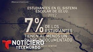 Deportación masiva derrumbaría la economía | Noticiero | Noticias Telemundo