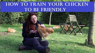 How to Train Y๐ur Chicken to be Friendly