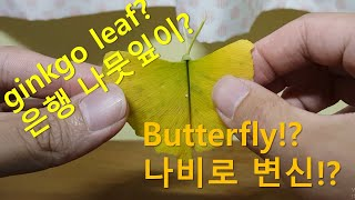ginkgo leaf butterfly fold To …