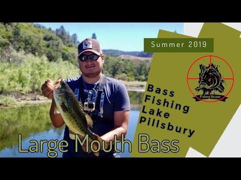 Bass Fishing Lake Pillsbury Youtube