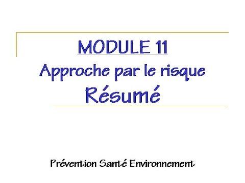 module 11 approche par le travail resume youtube