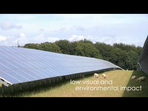 Sheep's Eye View of Solar Farm - British Solar Renewables