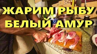 жАРИМ РЫБУ- БЕЛЫЙ АМУР