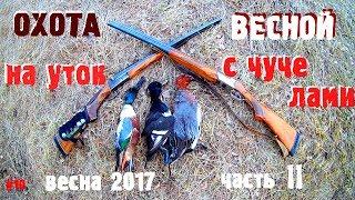 #10 Весенняя охота на уток с чучелами / утиная охота 2017 Часть 2