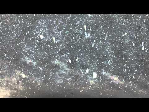 Snowfall in Antarctic Sea