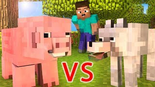 Wolf Life / Pig Life - Minecraft animation
